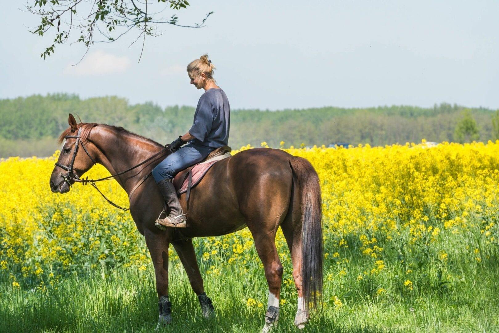 Woman riding horse in prairie field- PEMF Health Inc.
