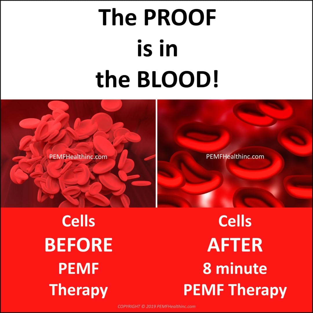 The Proof is in the Blood- PEMF Health Inc.